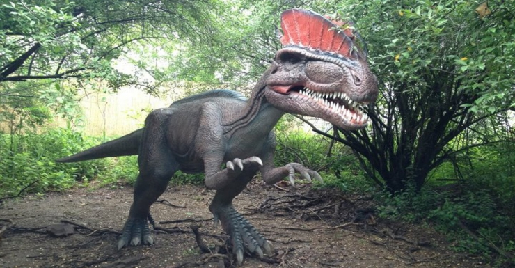 Overpeck Park is Going Jurassic: Field Station Dinosaurs